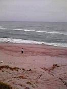 日本海だよ^^
